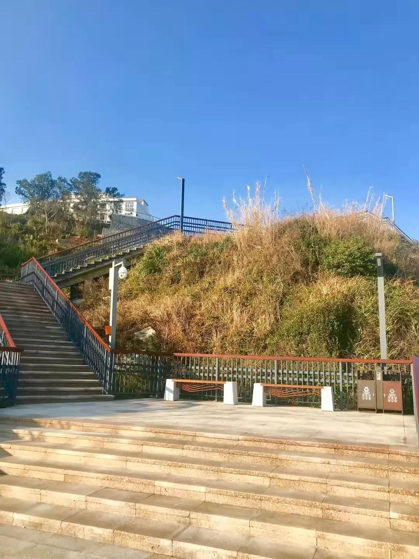 漂亮,苍南渔寮景区滨海栈道亮起来了!