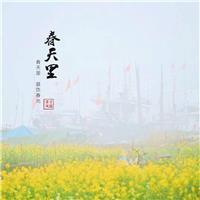 龙港外滩《春天里》——摄影董学风