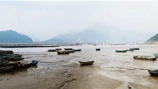 """新媒体看苍南--悄悄转变成""""魅力渔镇""""的大渔"""